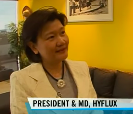 The cautionary tale of Hyflux's Olivia Lum's rags-to-riches